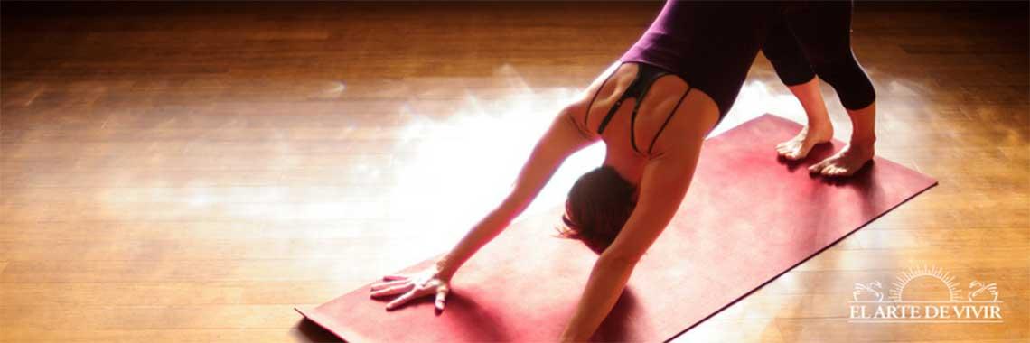 Yogaticketcode