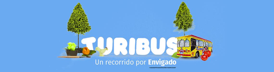 Turibus