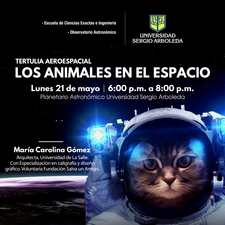 Los_animales_en_el_espacio_redes-02