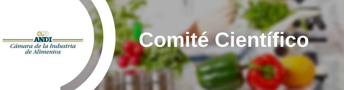 Comit__de_asuntos_legales__7_