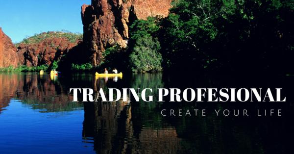 Thumb600_trading_profesional