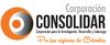 Thumb100_consolidar